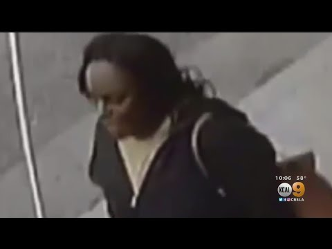 Police Search For Woman Who Attempted To Kidnap Child In South LA