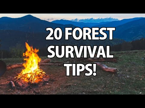 20 Outdoor Survival Tips For Your Next Camping Trip