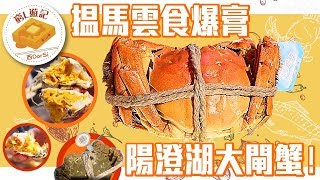 [窮L遊記·大陸超市篇] #06 搵馬雲食爆膏陽澄湖大閘蟹!