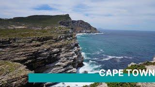 World of Birds Wildlife Sanctuary & Monkey Park, Cape Town