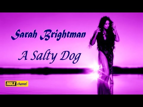 Música A Salty Dog