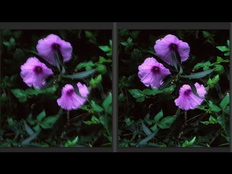 Photoshop's Genius Shake Reduction Tool Fixes Blurry Shots Like Magic