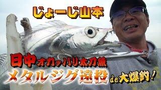 日中オカッパリ太刀魚-メタルジグ遠投de大爆釣!じょーじ山本