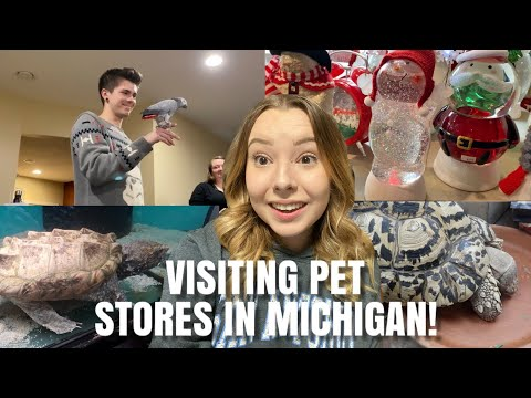 Visiting Pet Stores In Michigan + Going To Christmas Events! | Vlogmas Day 6