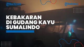 BREAKING NEWS Kebakaran Besar Terjadi di Gudang Kayu Sumalindo, Pemadam Masih Berupaya Padamkan Api