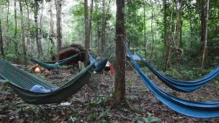 Amazon Jungle Camping Adventure on the Urubu River