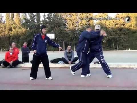 Técnicas del maestro Chen Xiang