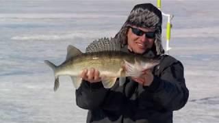 Рыбалка зимняя на куйбышевском водохранилище