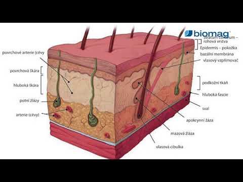 Kenőcs hormonok nélkül pikkelysömörhöz