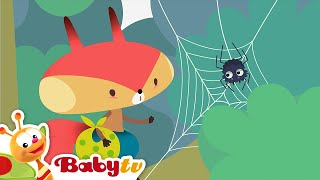 Rocco - NEW episodes now on BabyTV