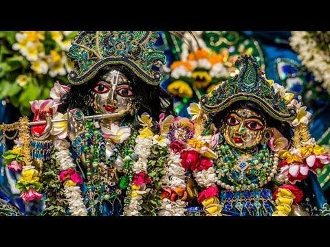 Download Goshala Iskcon Mayapur Video 3GP Mp4 FLV HD Mp3 Download
