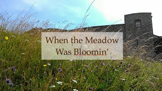 When the Meadow was Bloomin'