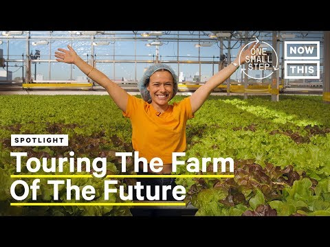 Meet Viraj Puri, CEO and Co-Founder of Gotham Greens - The Farm of the Future