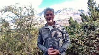De la crisis a la oportunidad; Sabiduría de la montaña en tiempos de COVID19