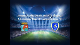 R.F.F.M. - Jornada 12 - Preferente Infantil (Grupo 2): A.D. Colmenar Viejo 0-1 Juventud Sanse.