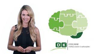 Cocaine Addiction and Rehabilitation | Drug Knowledge | Detox to Rehab