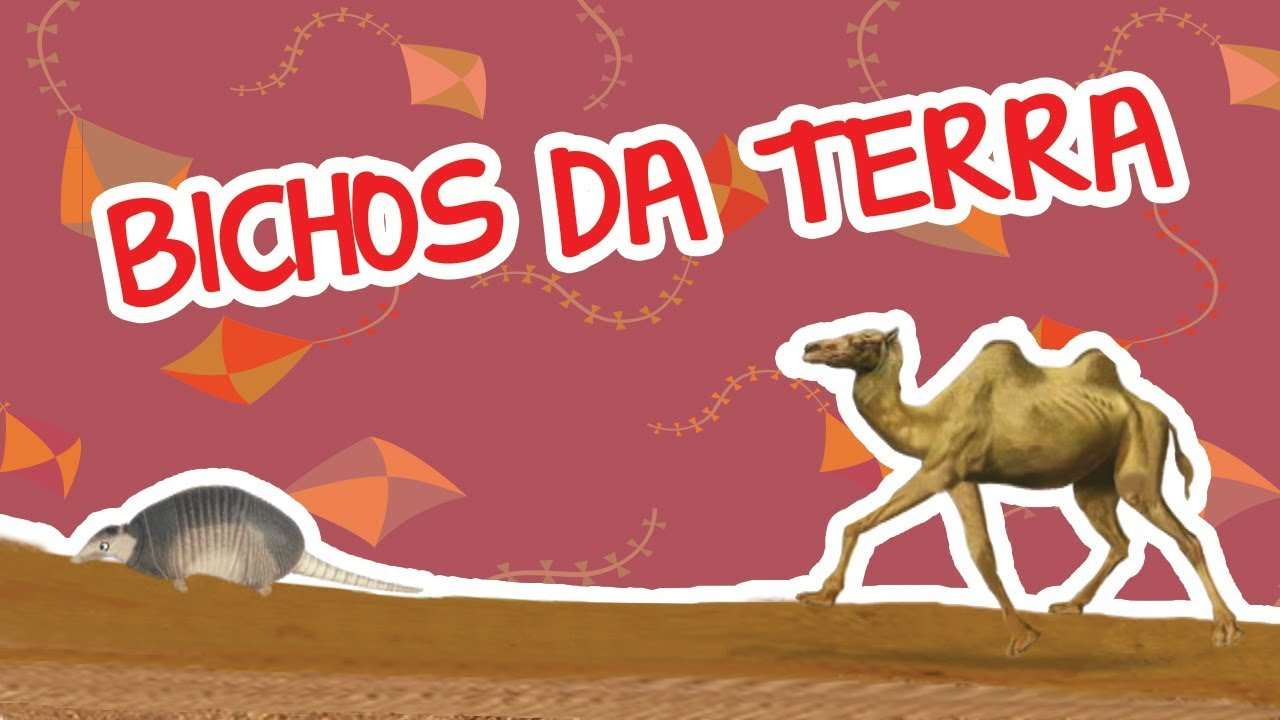 BICHOS DA TERRA   BICHOS 2