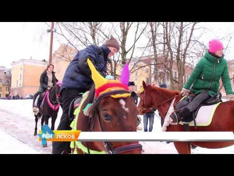 Новости Псков 23.01.2017 # Запрет катания на лошадях в Детском парке