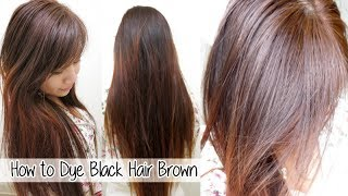 How To Dye Black Hair Dark Brown Without Bleach Images