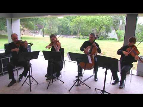 Cuarteto de cuerda. BSO El señor de los anillos-The Shire
