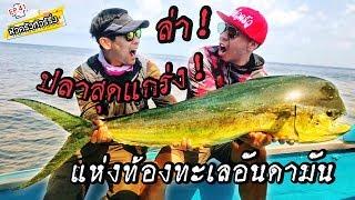 ตามล่าปลาสุดแกร่ง!! แห่งท้องทะเลอันดามัน [หัวครัวทัวร์ริ่ง] EP.41
