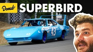 Superbird+Daytona - Everything You Need to Know | Up to Speed