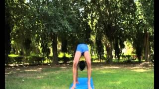 forearm balance yoga pose yome