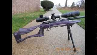 Squirrel hunting with The 17hmr.wmv