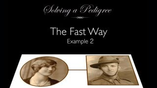 Solving A Pedigree - The Fast Way (example 2)