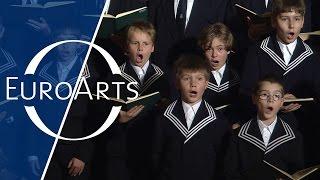 "St. Thomas Boys Choir: J.S. Bach - ""Fürchte dich nicht"" Motet, BWV 228"