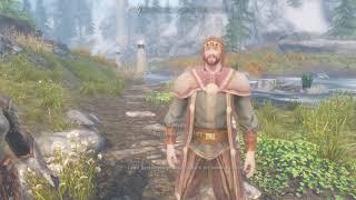 Встретил верховного короля Торуга в Совнгарде (The Elder Scrolls V - Skyrim)