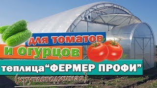Фермерская теплица для круглогодичного выращивания томатов и огурцов