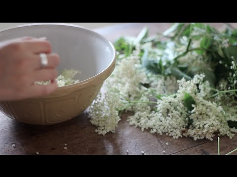 Video My homemade elderflower cordial | Heather At Home