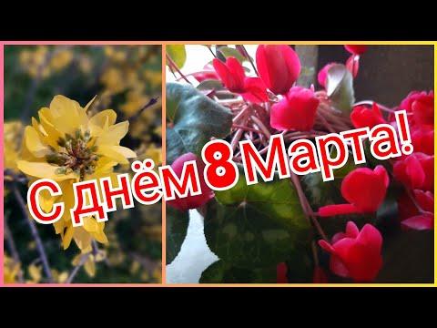 Поздравляю! 🌷 С днём 8 Марта, с праздником Весны, дорогие женщины! Felice 8 marzo, cari donne!