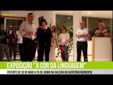 """Exposição """"Cor da Linguagem"""" de Neusa Sobrinho"""