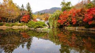 Корея, Храмовый комплекс Пульгукса,Южная Корея
