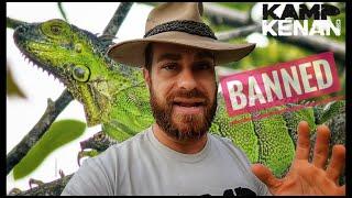 Iguana Ban in Florida