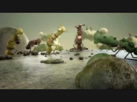 Les onguents pour le microorganisme végétal unguéal