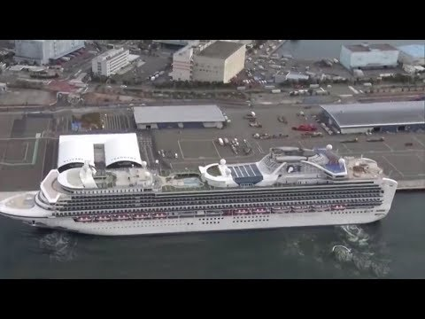 Confirmed coronavirus cases rise to 20 on cruise ship off Japan