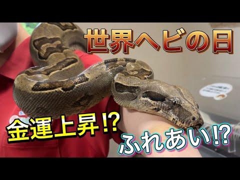 【世界ヘビの日】カドリーで暮らすヘビたちをご紹介します!