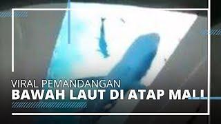 Viral! Pemandangan Bawah Laut di Atap Mall, Wali Kota Semarang: Daya Tarik Baru Segera Bertambah