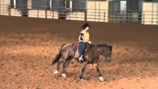 Class 3 Western Horsemanship