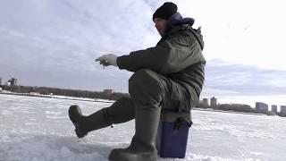 Рыбалка на химкинском водохранилище 2019