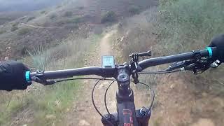Backbone Trail downhill (Sycamore Canyon).
