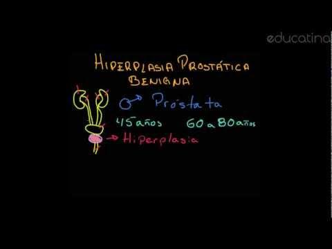 Cáscara de la HBP