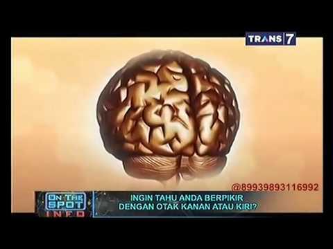 Video On The Spot - Ingin Tahu Anda Dengan Berpikir Dengan Otak Kanan atau Kiri?