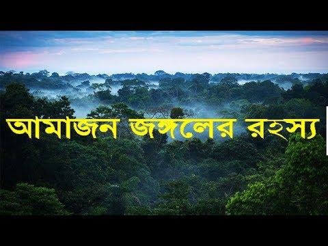 পৃথিবীর সবচেয়ে বড় এবং ভয়ঙ্কর ও রহস্যময় জঙ্গল আমাজন। World Largest Rain forest Amazon
