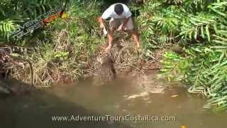 preview picture of video 'Crocodile Tour | Costa Rica Adventure Tours | Jaco | Los Suenos'