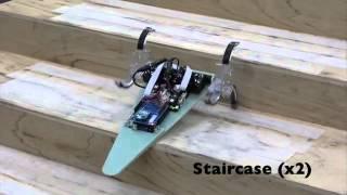 Wheel Transformer; A Wheel Leg Hybrid Robot with Passive Transformable Wheels