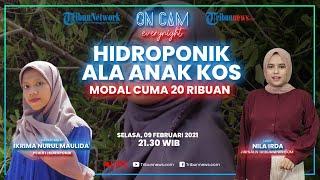 Ikrima Nurul, Ajak Bercocok Tanam Hidroponik Ala Anak Kos, Hemat Uang Makan & Modal Cuma 20ribuan